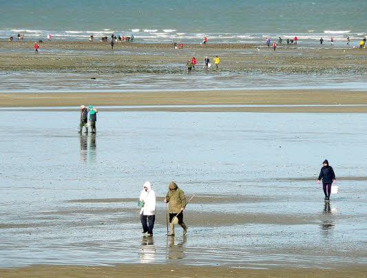 LIPAP CHERRUEIX littoral-breton-normand-3.jpg